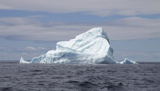 buy online 516a5 1109f Our Iceberg - Picture of Iceberg Man Tours, Twillingate ...