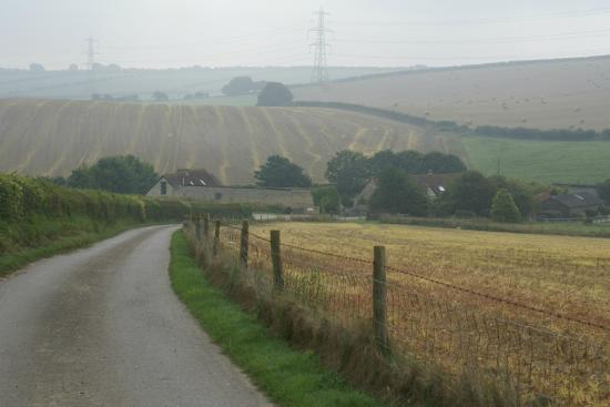Holcombe Valley Holiday Cottages & B&B : VIEW DOWN THE LANE TO COTTAGES