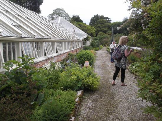 Tregrehan Garden : Tregrehan Green Houses