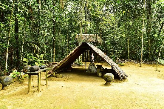 Amazon Jungle Palace: aldeia