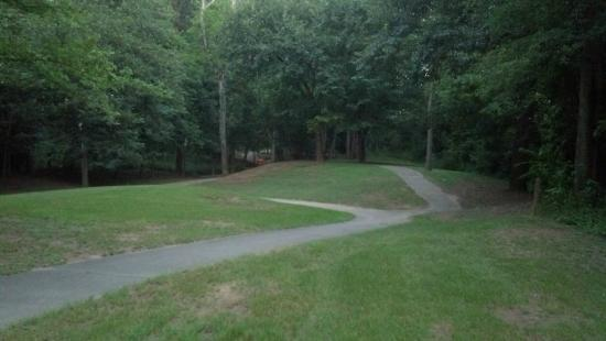 Ocmulgee Heritage Trail: Split in trail