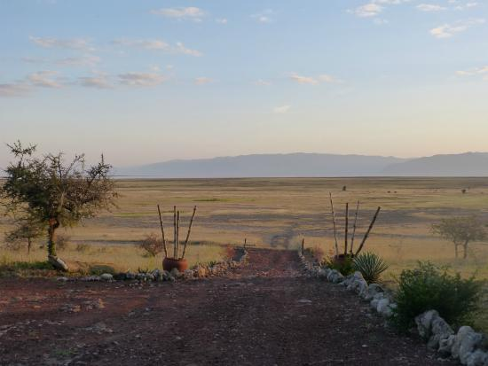 Rift Valley Photographic Lodge: Morning view