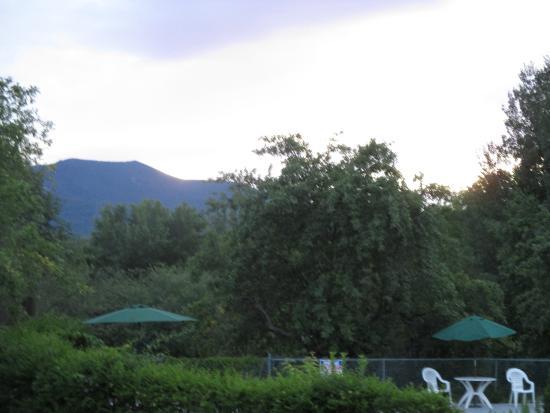 "برياركلف موتيل: ""The Moat"" is the backdrop behind the Briarcliff pool area"