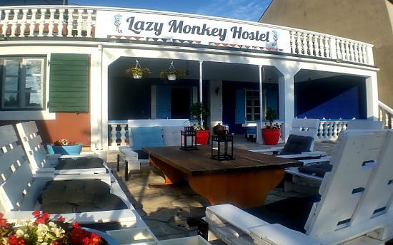 The Lazy Monkey Hostel