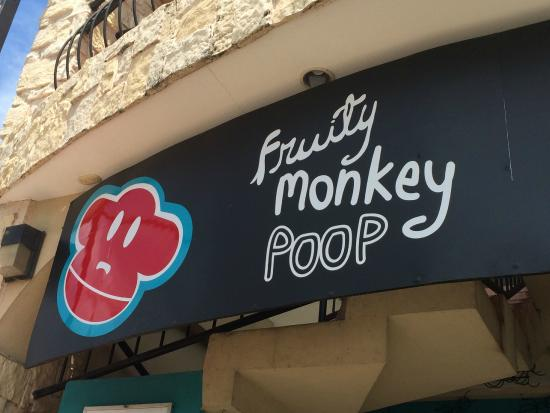 The Costa Rica Coffee Experience : Fruity Monkey Poop
