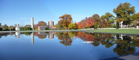 The Nelson-Atkins Museum of Art: Reflecting pool