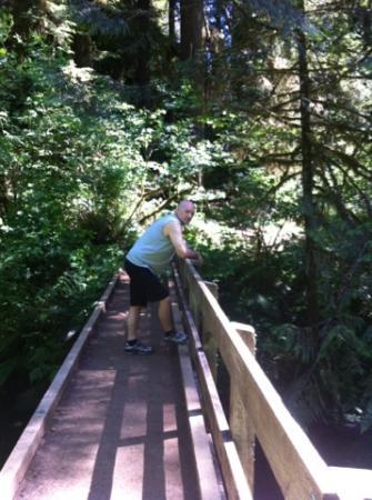 Oregon Coast, Oregón: Bridge
