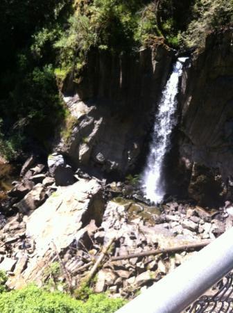 Oregon Coast, Oregón: Drift Creek Falls