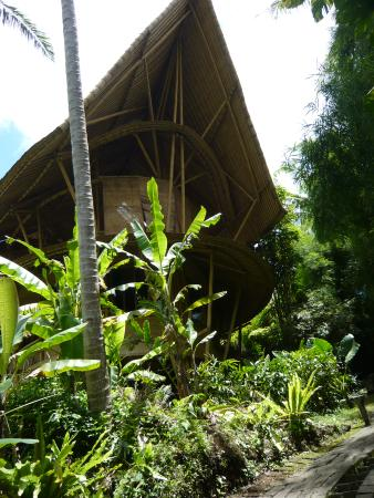 Green Village Bali Tours