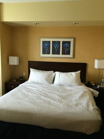 SpringHill Suites Denver Airport : King Bed
