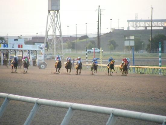 Selma, TX: Horses heading down the track.