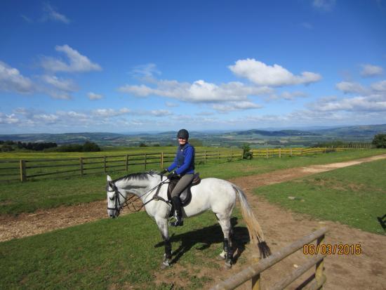 Cotswolds Riding: Storm Cap, 13yr old Connemara/Irish Warmblood