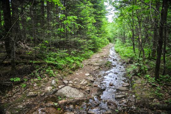 Saint-Quentin, Canada: Mt Carleton trail
