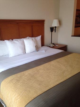 Comfort Inn & Suites Tifton: photo0.jpg