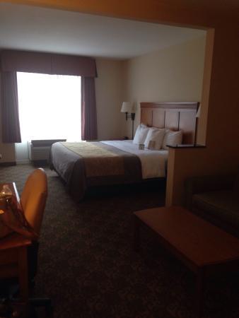 Comfort Inn & Suites Tifton: photo1.jpg