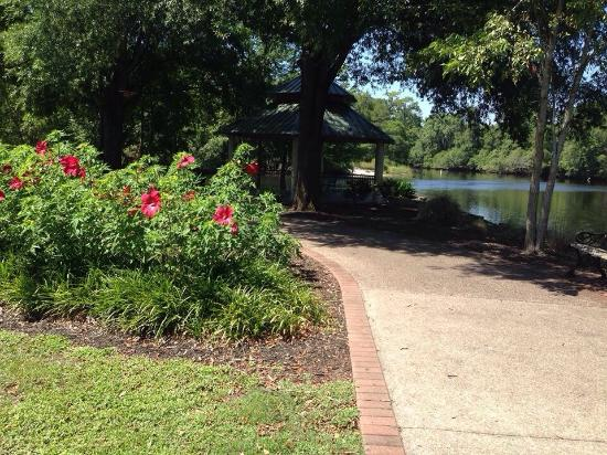 Conway Riverwalk 2020 All You Need To Know Before You Go