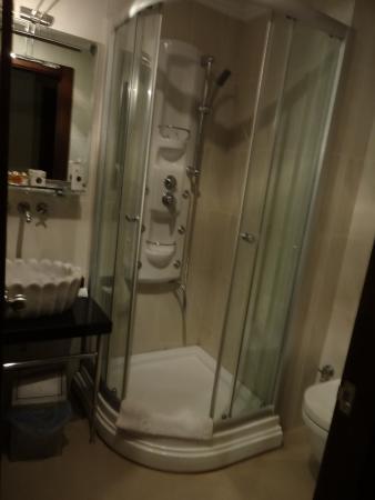 Burckin Suites Hotel: Baño