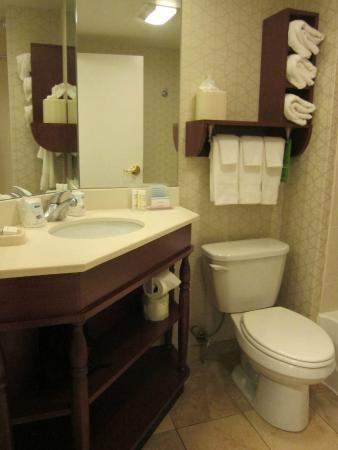 Hampton Inn Madison East Towne Mall Area: Bathroom (May 2015)