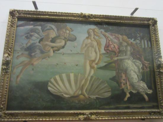 la naissance de v nus picture of uffizi gallery florence tripadvisor. Black Bedroom Furniture Sets. Home Design Ideas