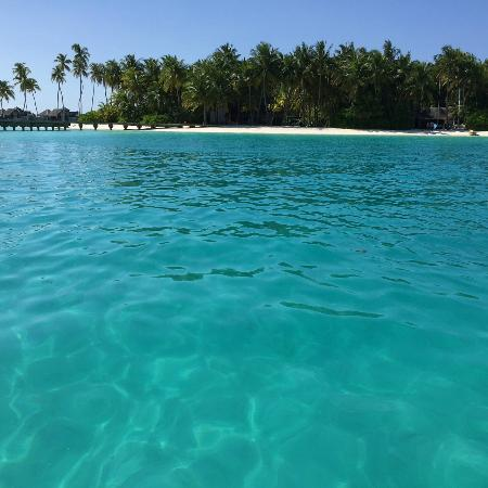 Gili Lankanfushi Maldives : view from the speed boat