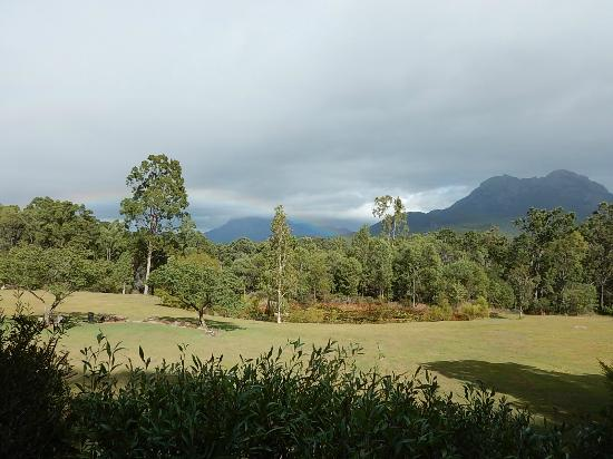 Tuckeroo Cottages: View from Kookaburra Cottage