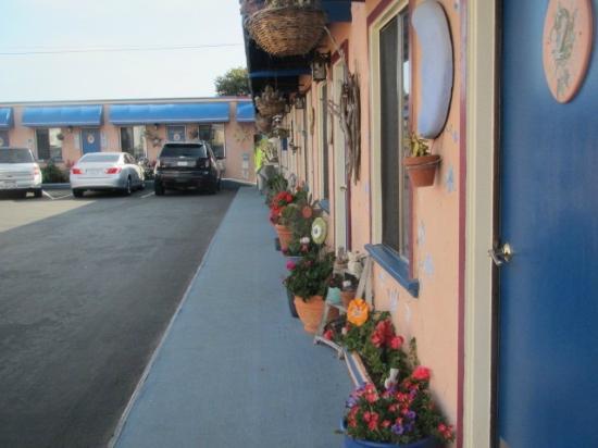 Seaside Motel in Cayucos, CA