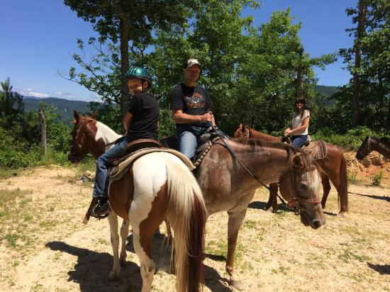 ‪End of the Trail Horseback Riding‬