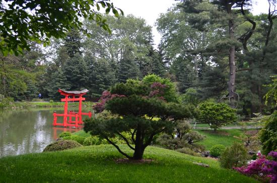 Cerezos picture of brooklyn botanic garden brooklyn - Brooklyn botanical garden admission ...