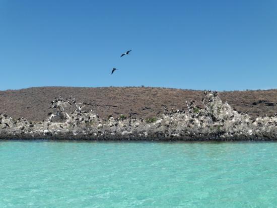 Arriba de la Roca: Wildlife Preserve in La Paz