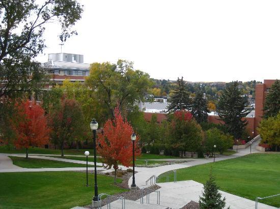 Washington State University: 四季もあり、綺麗なキャンパスです。