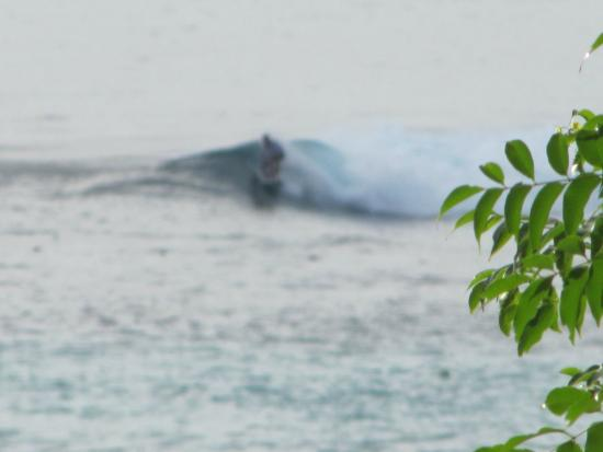 Song Lambung Beach Hut: surfing in front