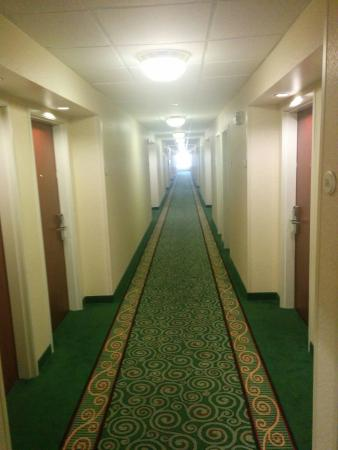 Courtyard Roseville Galleria Mall/Creekside Ridge Drive: Narrow hallway with dated carpet