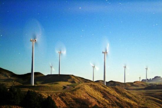 Chancellor Motor Lodge & Conference Centre: The Manawatu Windmills