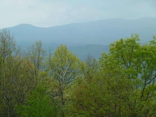 Amicalola Falls State Park Lodge Restaurant: the view from the deck off the lodge lobby