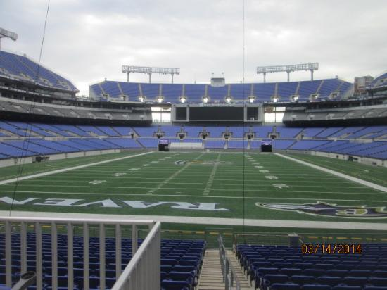 M&T Bank Stadium : Lower level