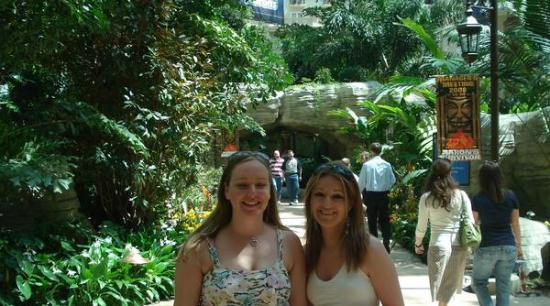 Gaylord Palms Resort & Convention Center Photo