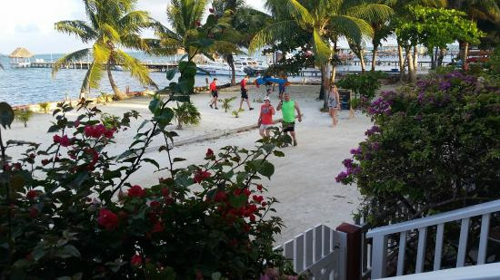 Caye Caulker Condos: Looking at Front Street
