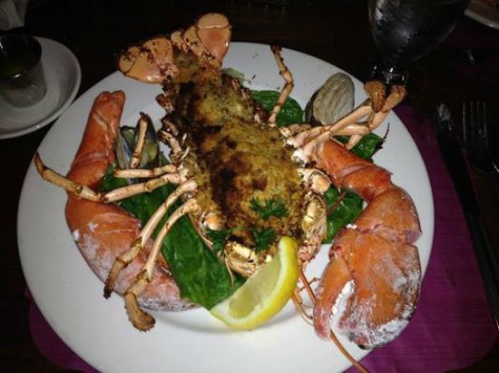 Dinnerhorn Bratskellar: Baked Stuffed Lobster