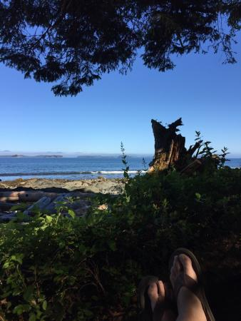 Mussel Beach Campground: Paradise at the end of the road...Logging road��