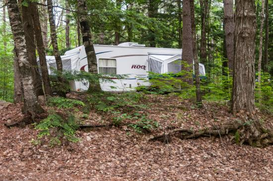 Adirondack Camping Village: Large, Shady, Private Site