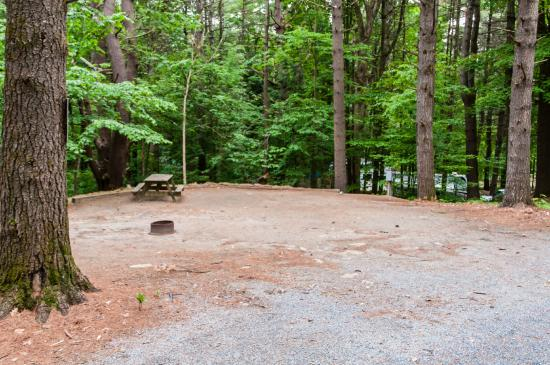 Adirondack Camping Village: Large, Open Site