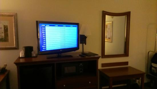 Wyndham Garden Greenville Airport: Flat screen TV