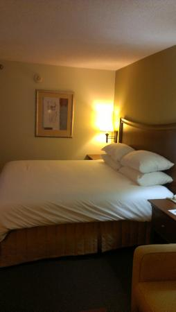 Wyndham Garden Greenville Airport: King bed