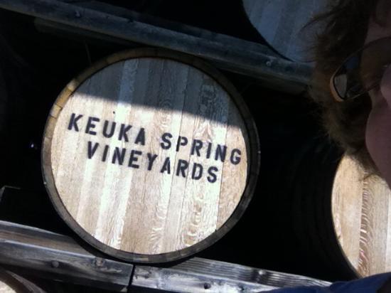 Finger Lakes Wine Country: Leila springs!