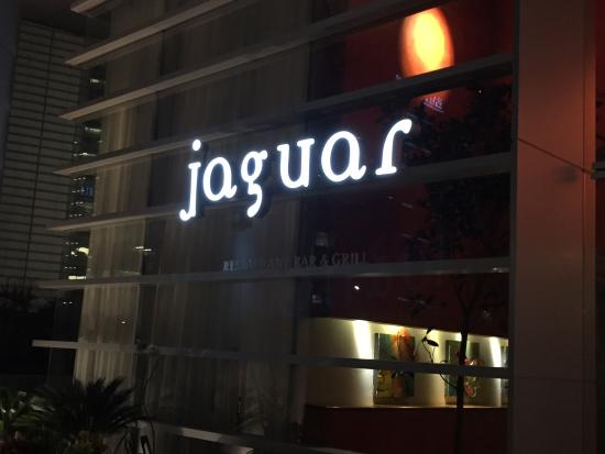 El jaguar simplemente ...