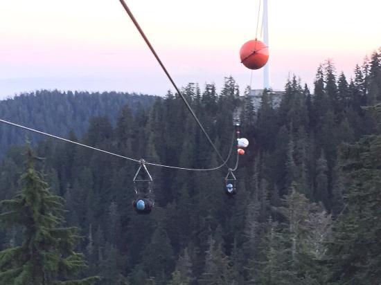 Grouse Mountain Ziplines Ziplining