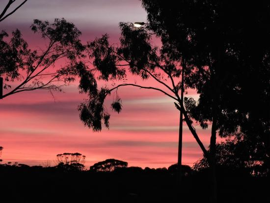 Merredin Tourist Park: The beautiful Eastern sky