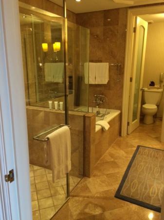 Master Bedroom Toilet master bedroom toilet - picture of four seasons hotel singapore
