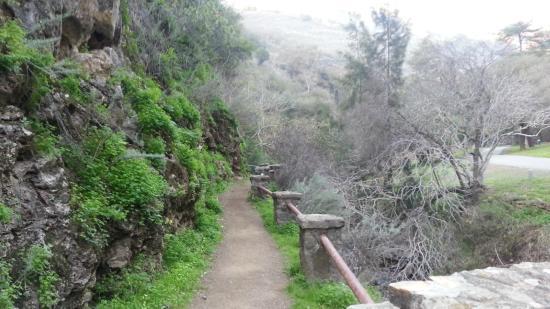 Alum Rock Park: A Rocks Wall