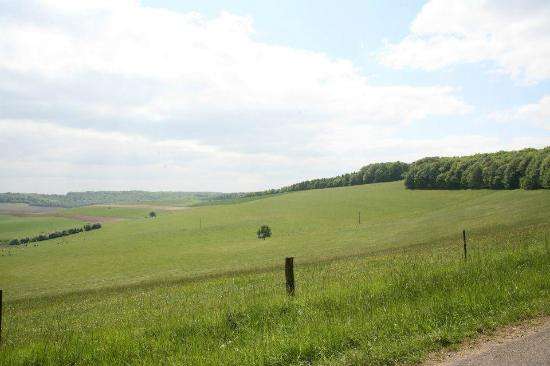 Harricourt, France: Haricourt 草原